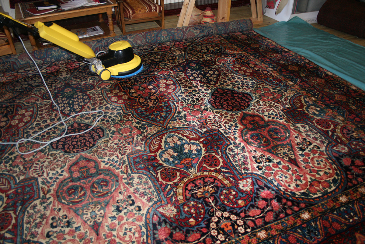 Persian rug cleaning shampoo