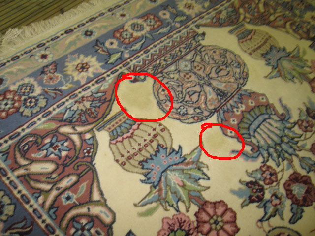 coffee stains oriental rug